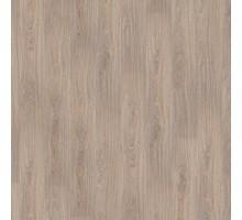 Oak TANGO light